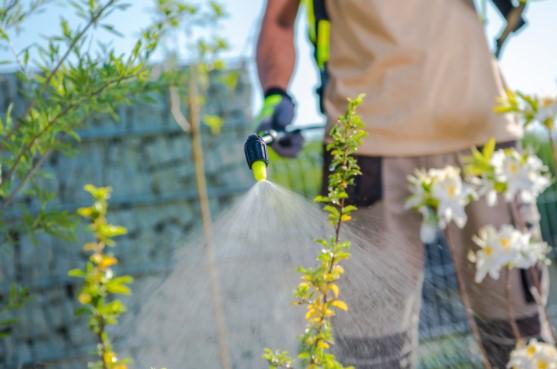 Advantages of natural pesticide